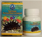 Фото в Красота и здоровье Товары для здоровья Целебные свойства трепанга сделали его известным в Владивостоке 0