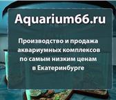 Изображение в Домашние животные Рыбки Аквариумы и аквариумные комплексы в Екатеринбурге в Екатеринбурге 7000