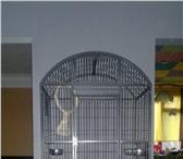 Foto в Домашние животные Птички Размеры 80 × 57.5 × 167 см  Материал в Архангельске 9900