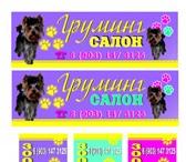 Фотография в Домашние животные Стрижка собак Профессиональный грумер подстрижет вашего в Котельники 1300