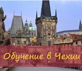 Фотография в Образование Вузы, институты, университеты Языковая школа Royal school открывает новое в Москве 0