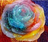 Фотография в Красота и здоровье Парфюмерия Мыльная основа , отдушки, ароматика , крастители в Самаре 110