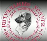 Изображение в Домашние животные Услуги для животных Кремация на общих основаниях; Кремация индивидуальная в Томске 0