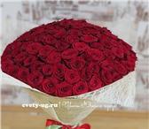 Фото в Домашние животные Растения продажа, доставка букетов из роз, хризантем, в Москве 0