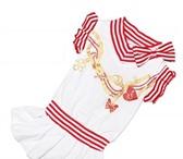 Foto в Домашние животные Одежда для собак Модное и 100% легкое платье с морской символикой, в Тамбове 550