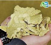 Изображение в Домашние животные Корм для животных Производим и продаем жмых соевый ГОСТ (Сырой в Москве 28