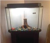Фотография в Домашние животные Рыбки продам аквариум на 40-50 литров, с тумбой в Магнитогорске 5500
