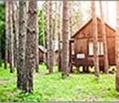 Foto в Отдых и путешествия Дома отдыха База отдыха «Тихие зори» расположена в Саратове 0