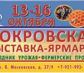 Foto в Развлечения и досуг Выставки, галереи Праздник для жителей и гостей Великого Новгорода в Великом Новгороде 1