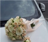 Фотография в Домашние животные Растения Заказ и доставка цветов!Цветы в розницу по в Москве 10