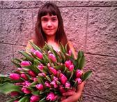 Foto в Домашние животные Растения Тюльпаны к 8 марта , вся палитра цветов, в Сочи 25
