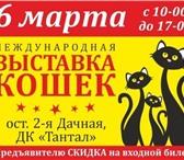 Фотография в Домашние животные Выставки кошек Дорогие Друзья!Приглашаем ВАС посетить Международную в Саратове 0