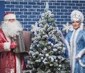 Foto в Развлечения и досуг Организация праздников Музыкальный дед Мороз с баяном и поющей Снегурочкой в Великом Новгороде 1500
