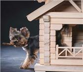 Изображение в Домашние животные Товары для животных ОПИСАНИЕ:Домик для собак маленьких пород в Новокузнецке 16900