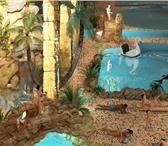 Фотография в Строительство и ремонт Ландшафтный дизайн Декорирование аквапарка искусственным камнем в Казани 1000
