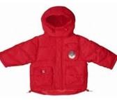 Изображение в Одежда и обувь Детская одежда Продам куртку-пуховик,  рост 92-98см (2 года). в Москве 550