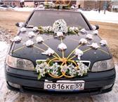 Foto в Авторынок Авто на заказ Заказ автобусов,  микроавтобусов,  легковых в Перми 450