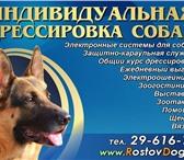 Foto в Домашние животные Услуги для животных Гостиница для животных собак кошек котов, в Ростове-на-Дону 0