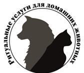 Фото в Домашние животные Услуги для животных Компания «ВетРитуал ДВ» оказывает большой в Хабаровске 1500